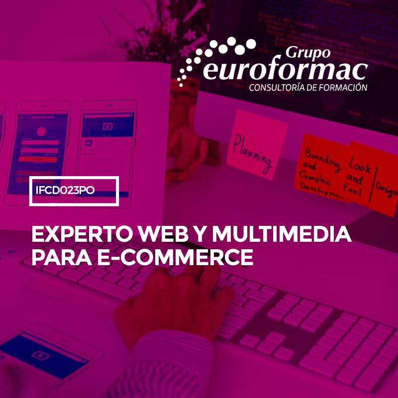 EXPERTO WEB Y MULTIMEDIA PARA E-COMMERCE