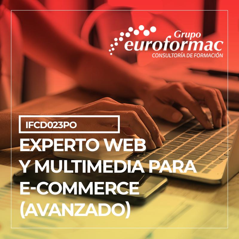EXPERTO WEB Y MULTIMEDIA PARA E-COMMERCE (AVANZADO)