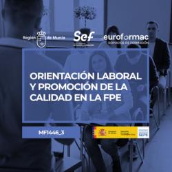 ORIENTACIÓN LABORAL Y PROMOCIÓN DE LA CALIDAD EN LA FORMACIÓN PROFESIONAL PARA EL EMPLEO