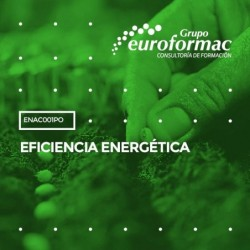 ENAC001PO - EFICIENCIA ENERGÉTICA--ONLINE  70 horas