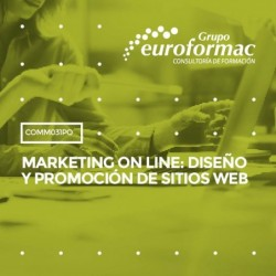 COMM031PO - MARKETING ON LINE: DISEÑO Y PROMOCIÓN DE SITIOS WEB--ONLINE  30 horas