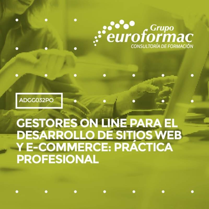 GESTORES ON LINE PARA EL DESARROLLO DE SITIOS WEB Y E-COMMERCE: PRÁCTICA PROFESIONAL
