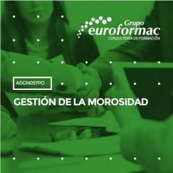 ADGN057PO - GESTIÓN DE LA MOROSIDAD--ONLINE  24 horas